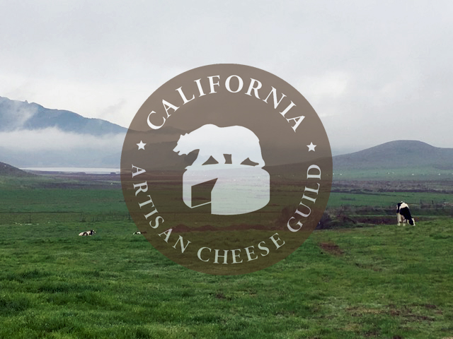 CHEESE CAMP ~ 2018