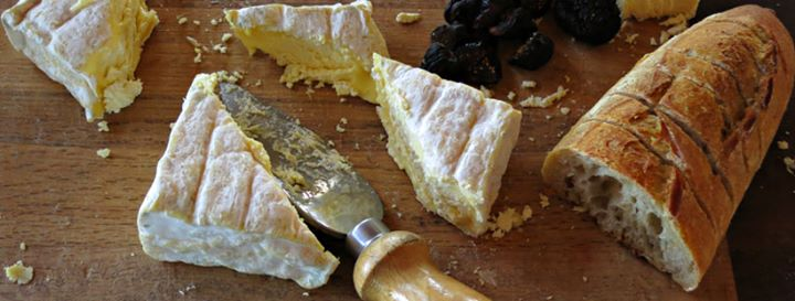 Cheesemaking: the art, the science, and the technology