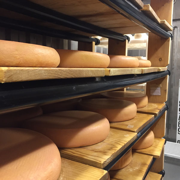 Cheese Aging: the technology, the science, and the practice